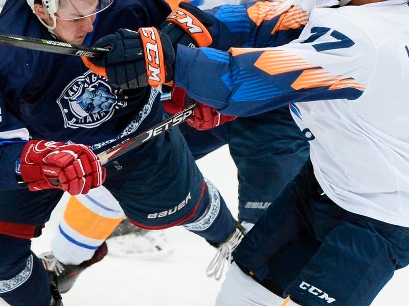 Тренировка рук у хоккеистов